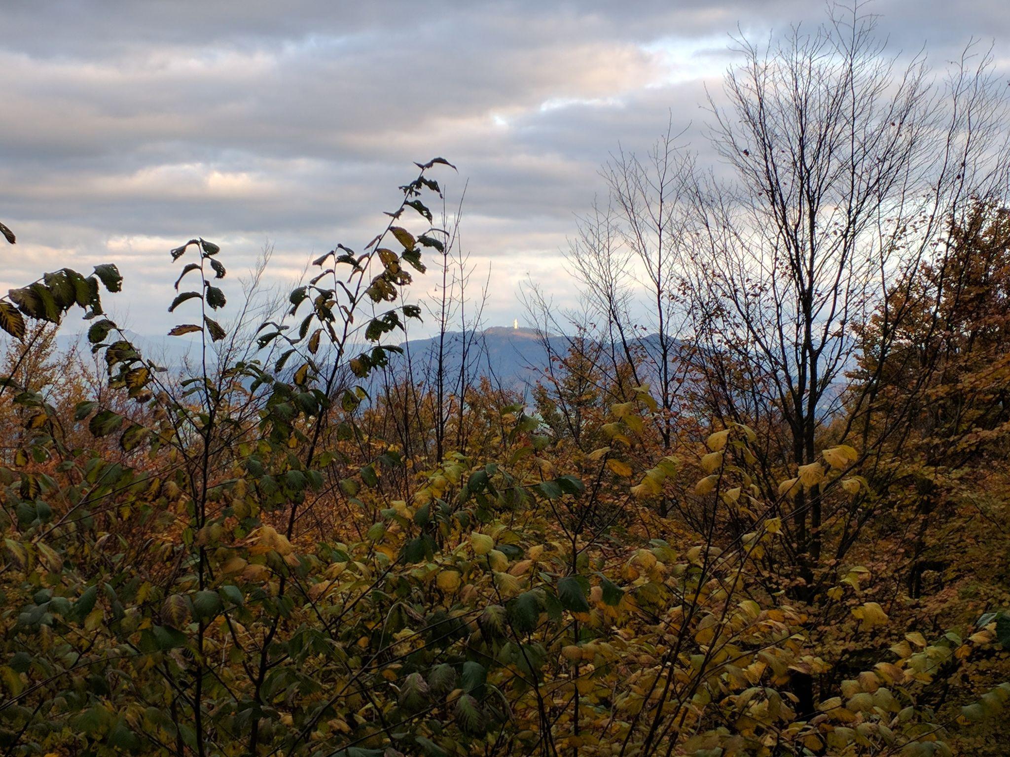 Blick von der Dachsriegelhütte auf den Hohen Bogen