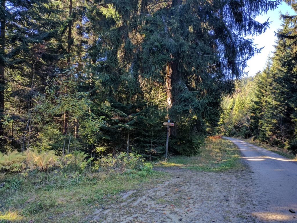 Trail nach Lohberg