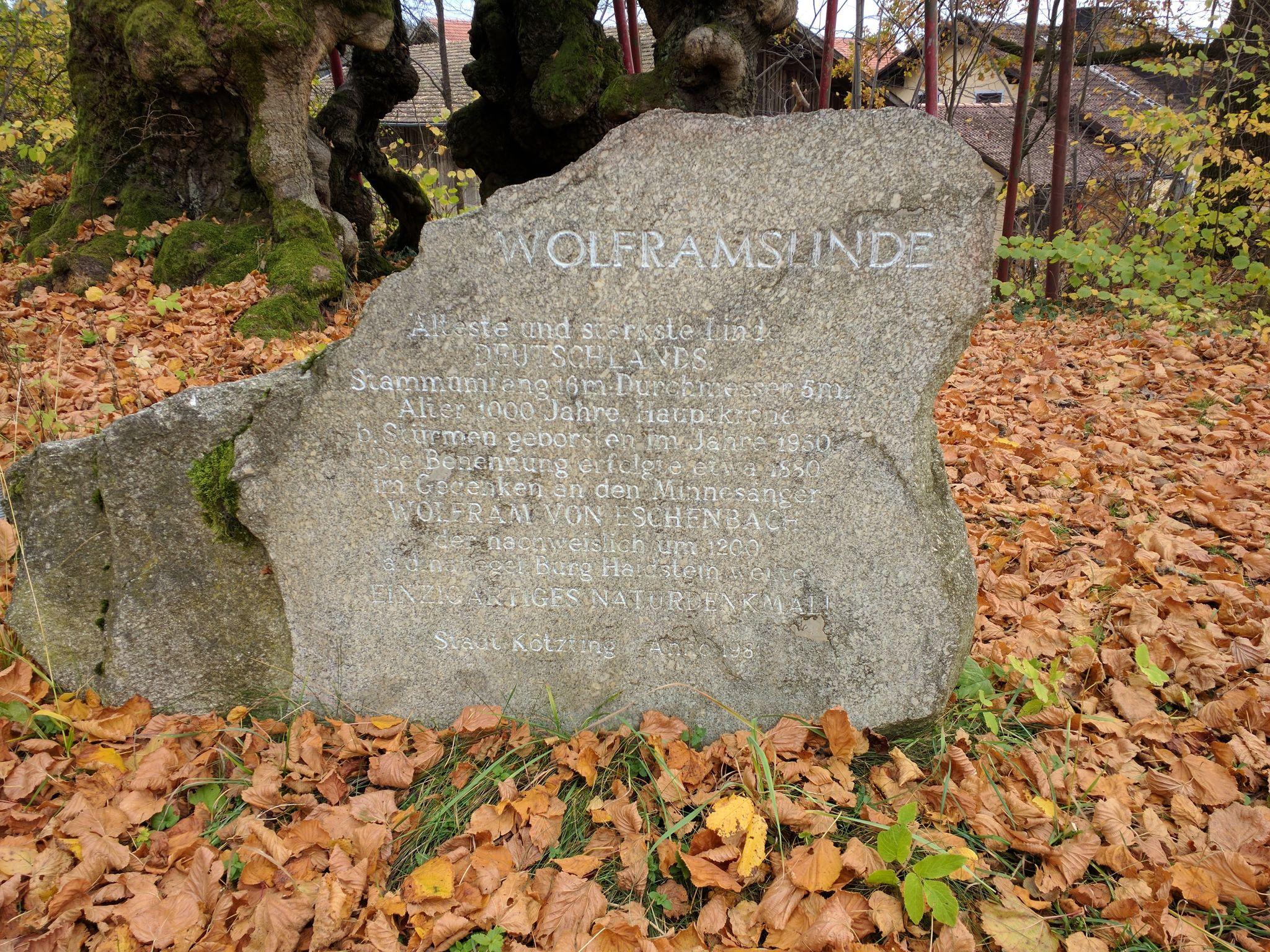 Stein an der Wolframslinde in Ried am Haidstein