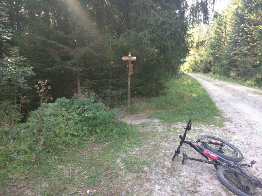 Beginn des Trails nach Lohberg