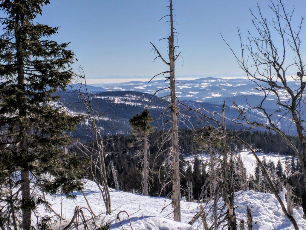 Blick vom Kleinen Arber im Winter