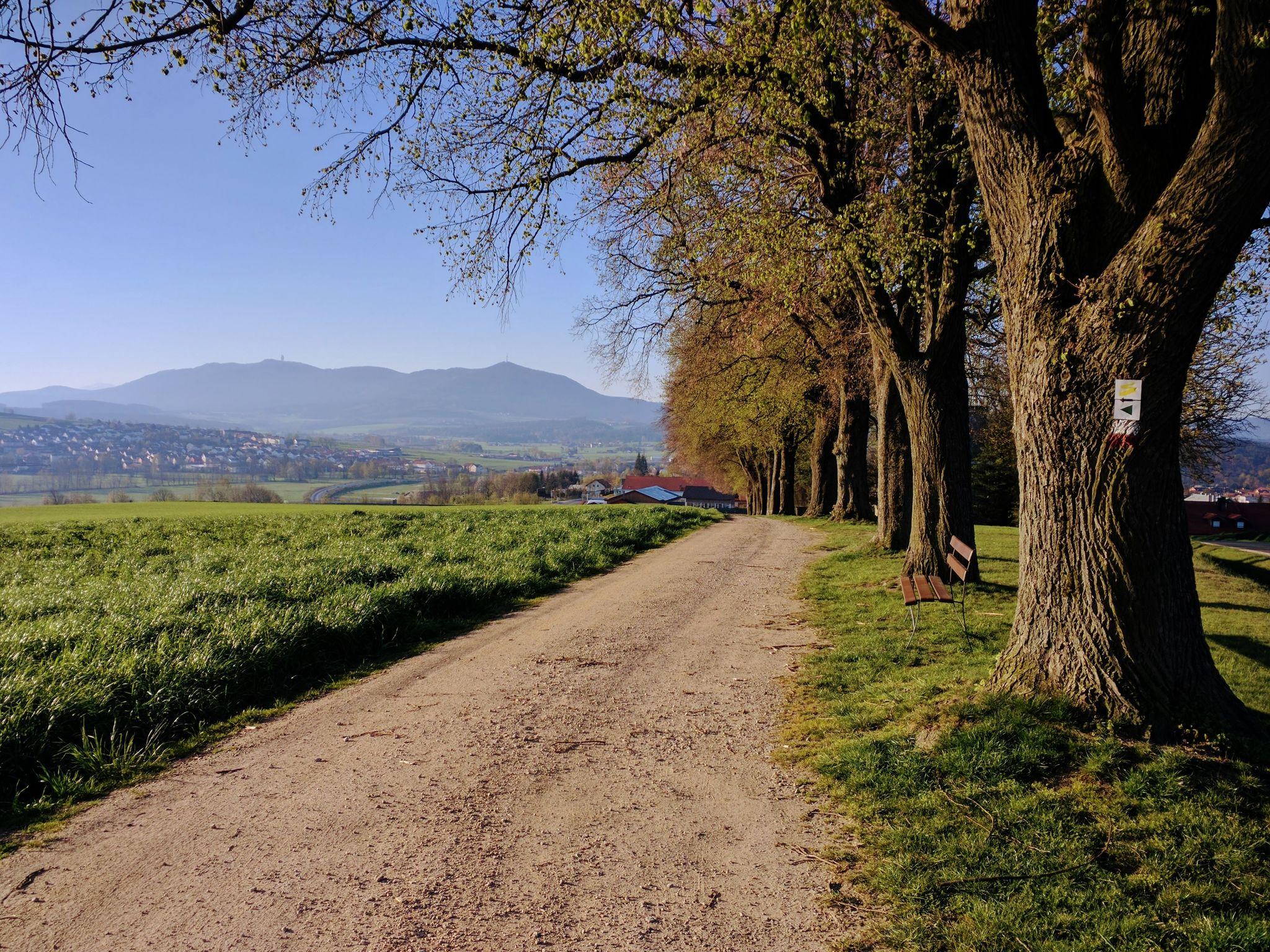 Blick zurück auf Furth im Wald und auf den Hohen Bogen