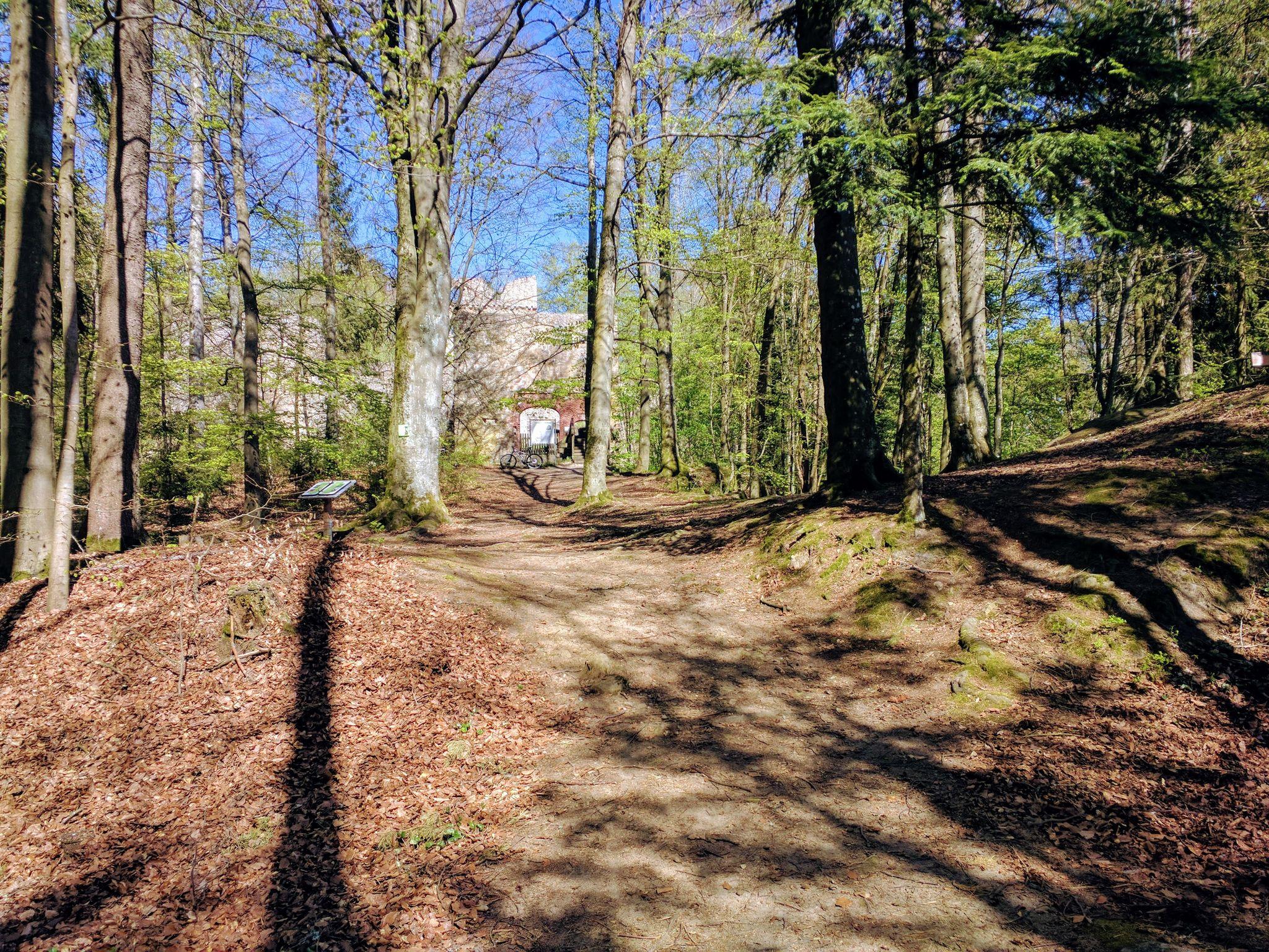 Trans Bayerwald - Anstieg zur Kürnburg