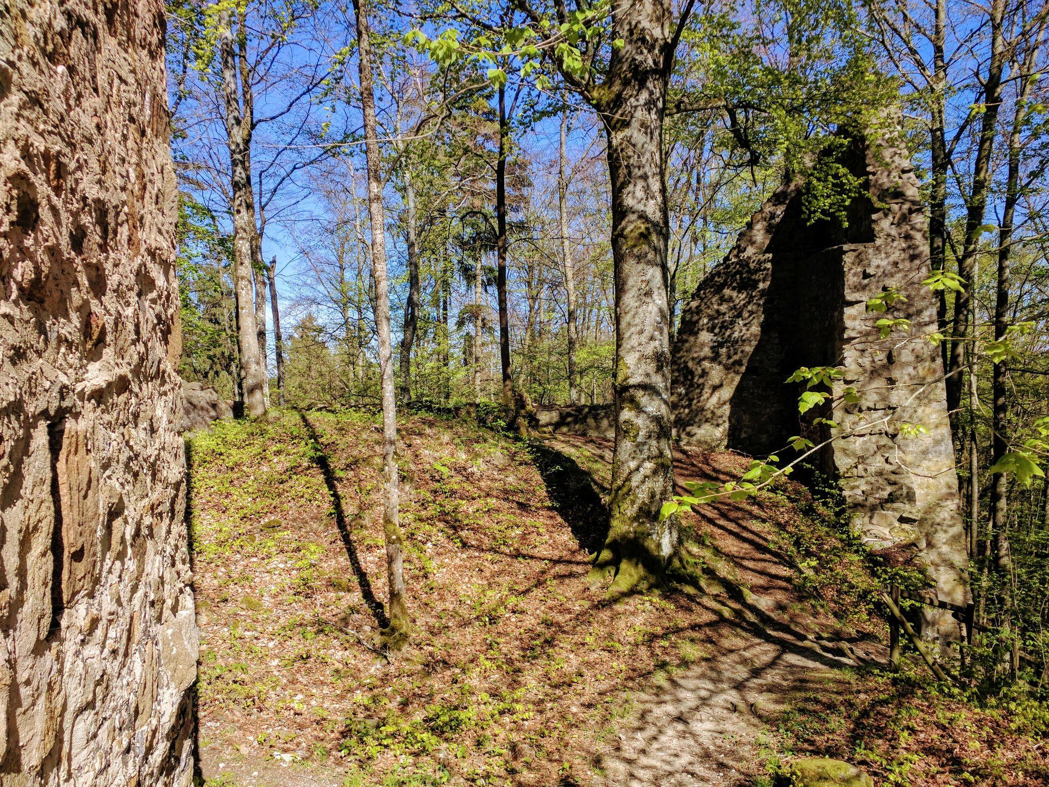 Die alten Gemäuer der Kürnburg