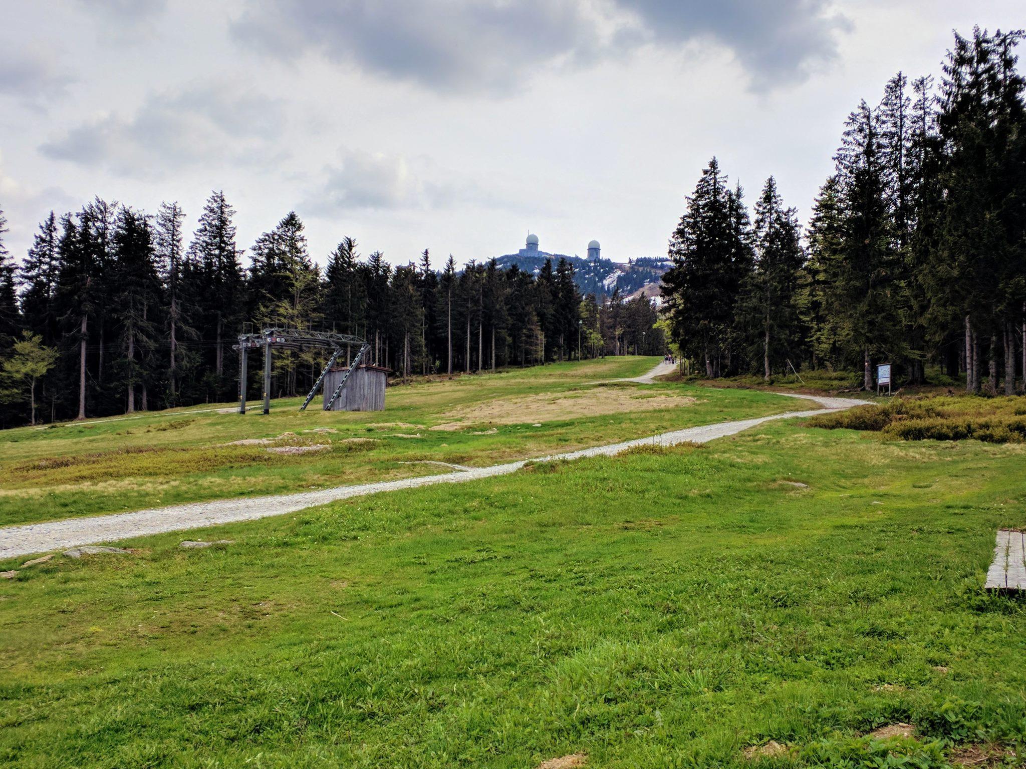 Blick auf den Gipfel des Großen Arbers vom Sonnenfelds aus