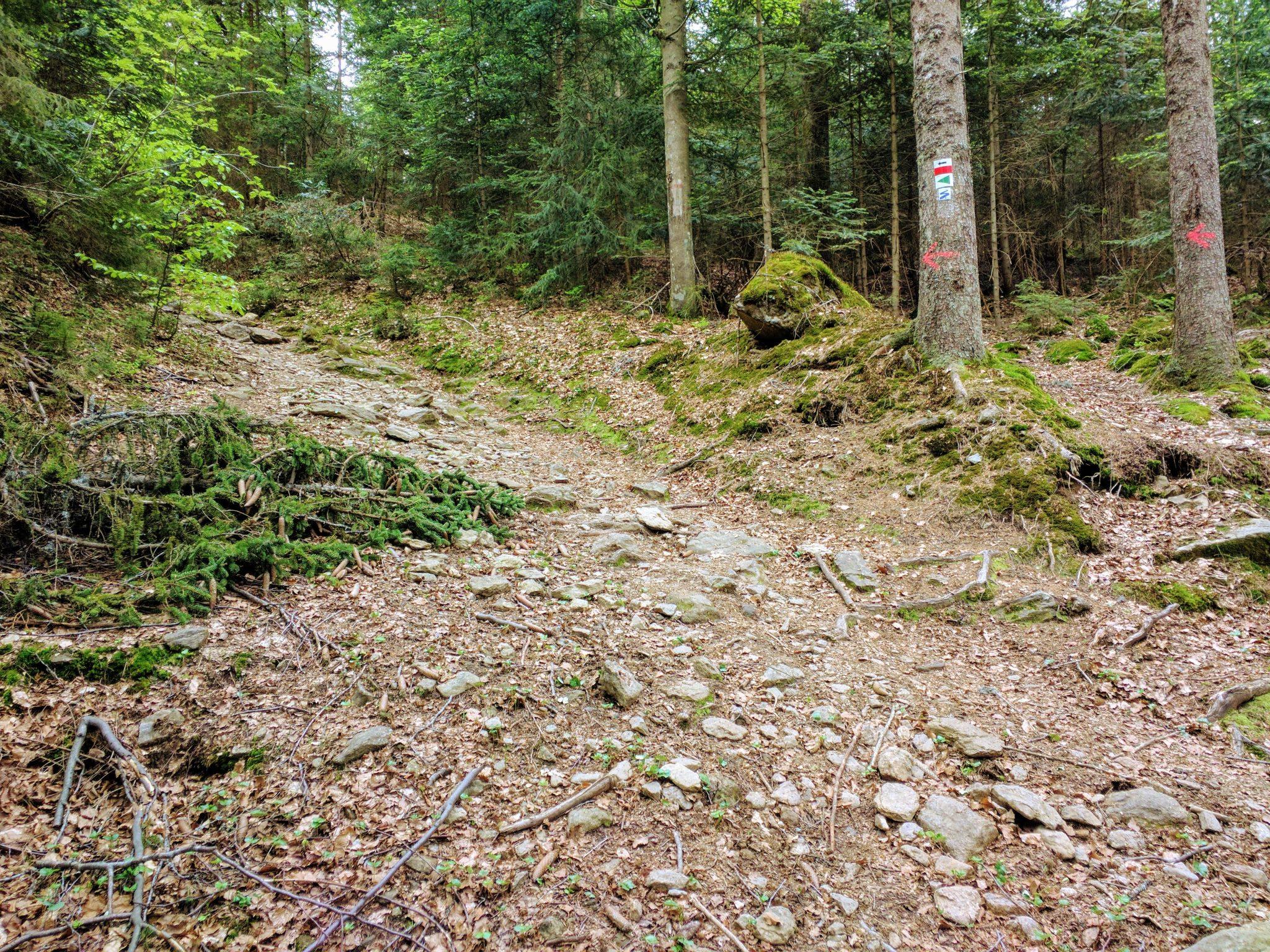 Der LO 3 bietet einige Herausforderungen, wie dieses Steilstück kurz vor dem Wasserfall