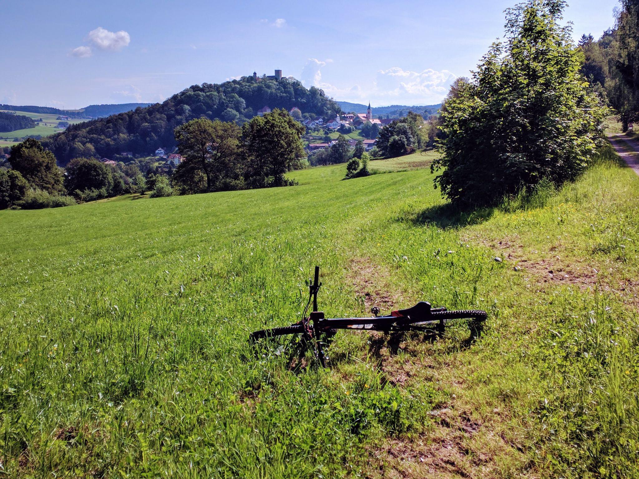 Der Ort und die Burg Falkenstein