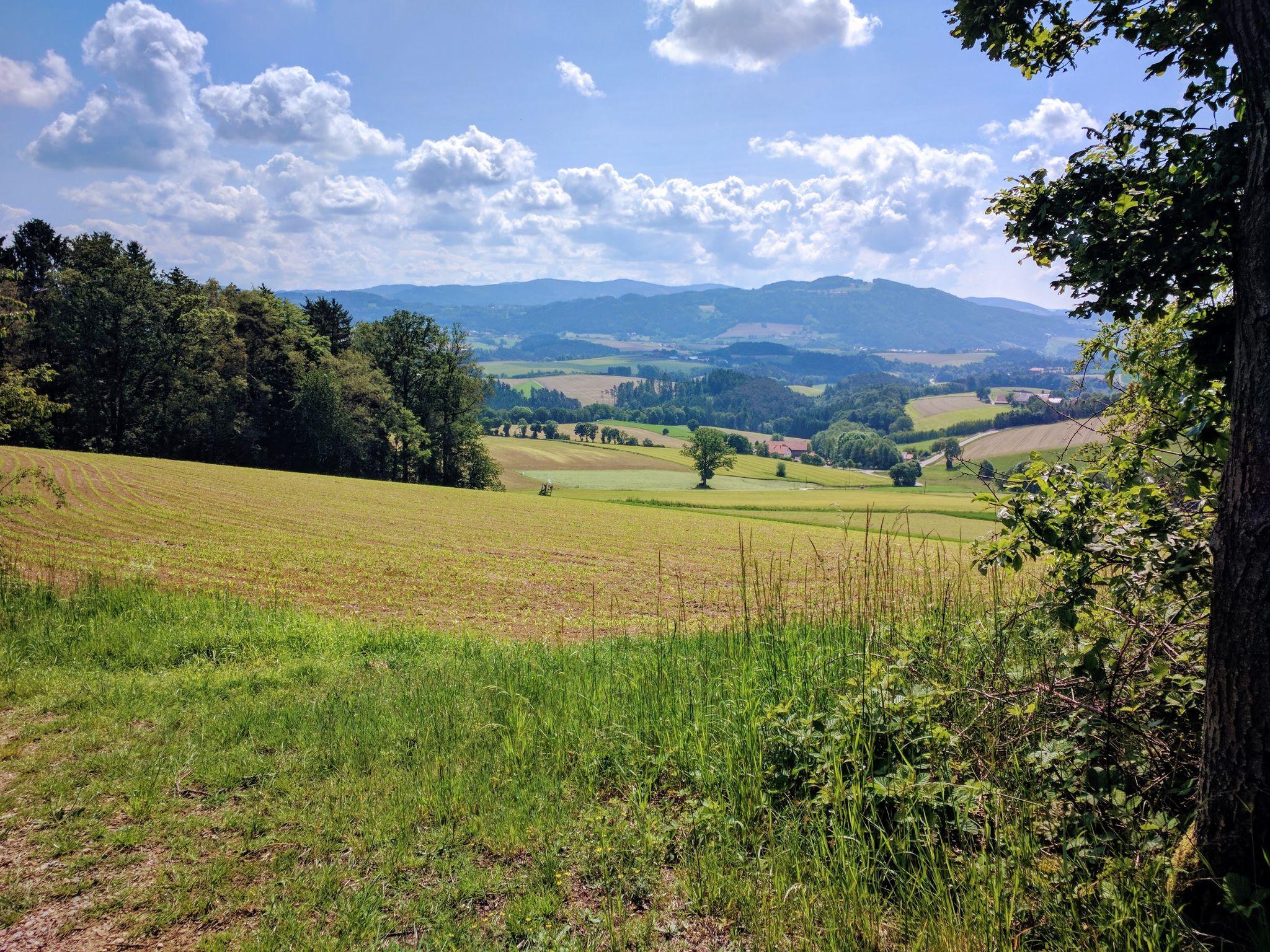 Trans Bayerwald - Blick bei Zinzenzell