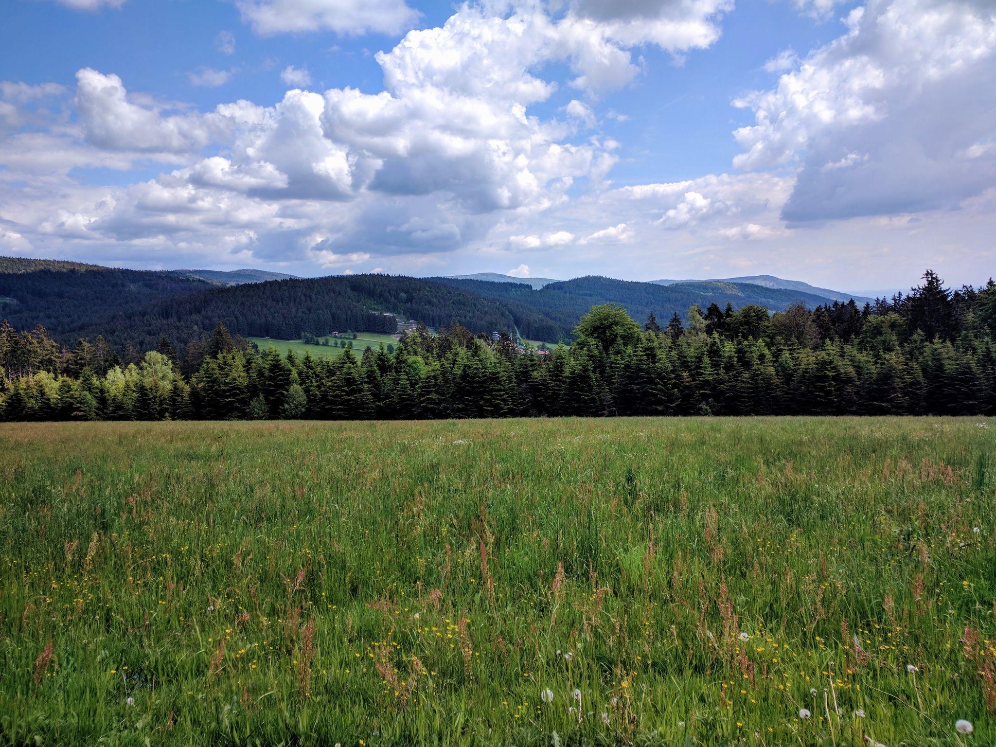 Trans Bayerwald - Die Berge von Sankt Englmar