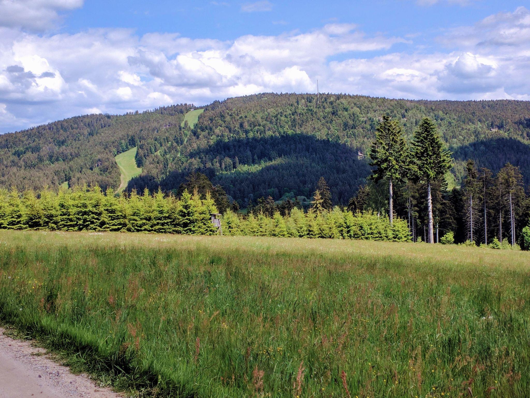 Trans Bayerwald - Der Pröller in Sankt Englmar