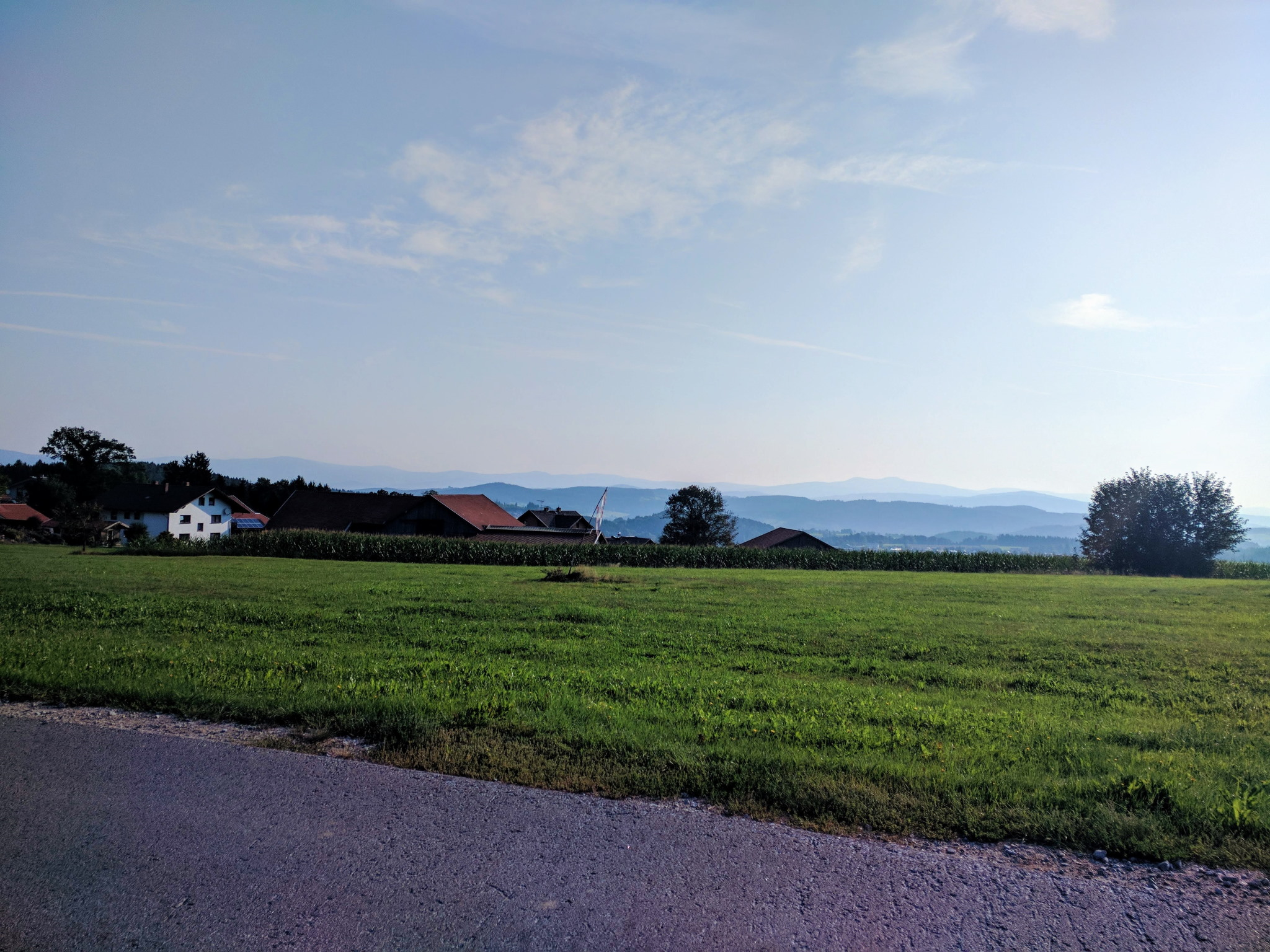 Trans Bayerwald - Blick auf den Bayerischen Wald