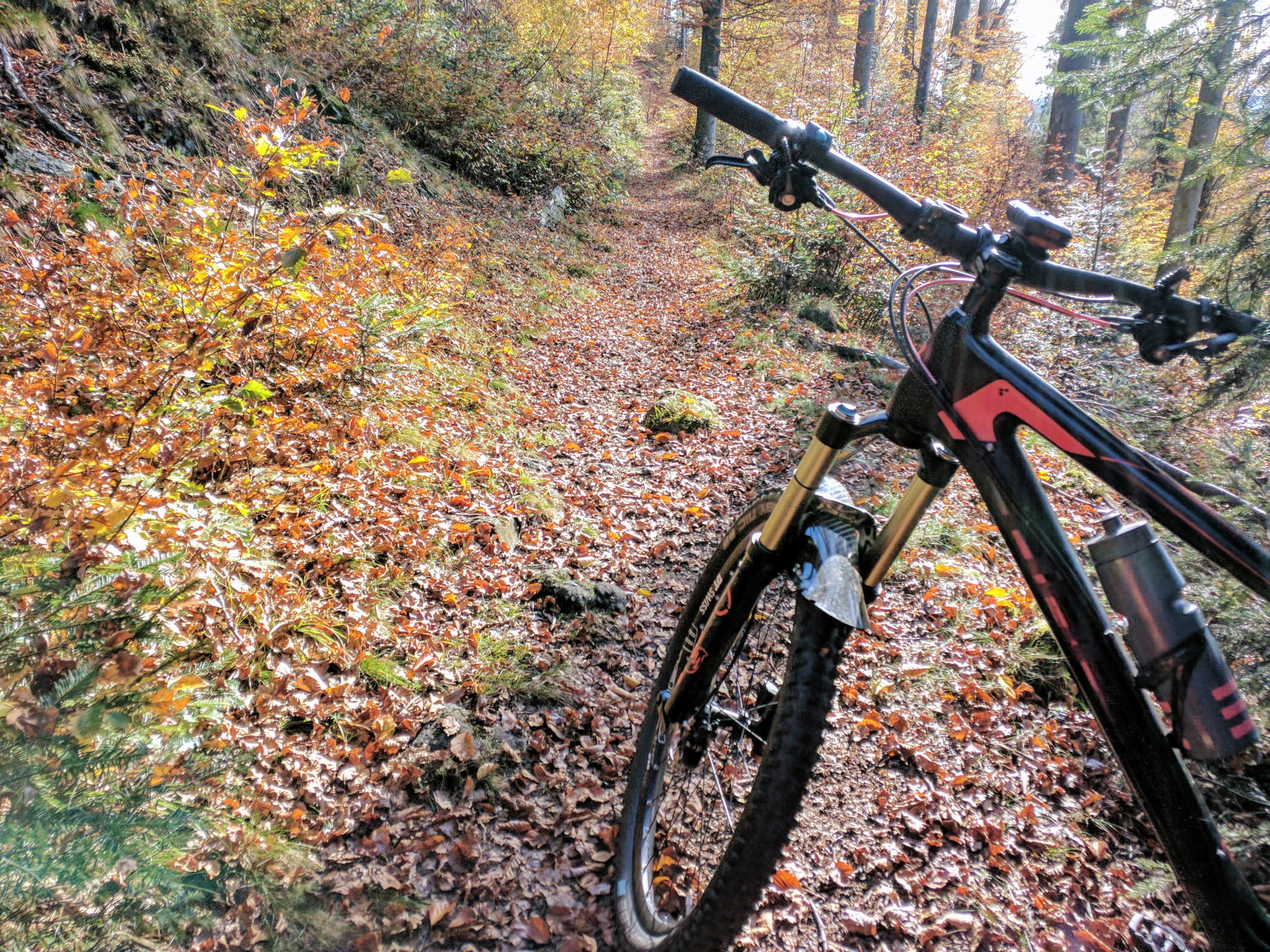 Trail bei Bodenmais