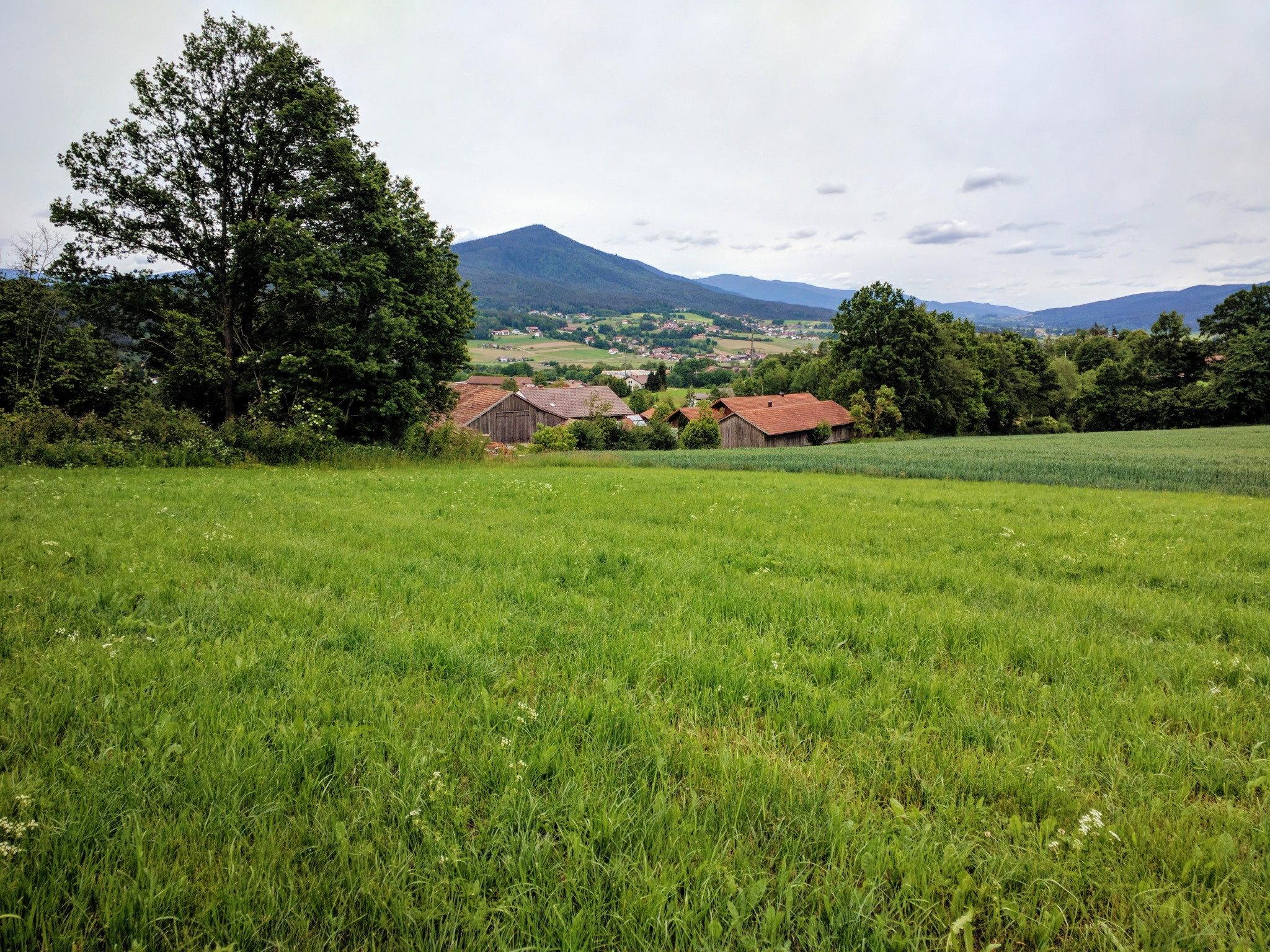Blick auf den Kaitersberg