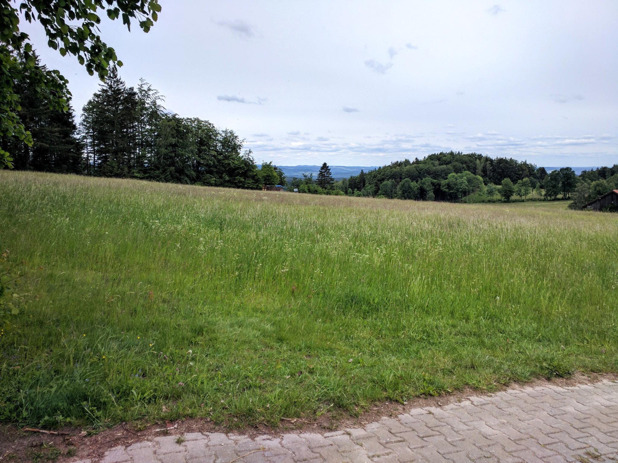 Blick bei Gillisberg