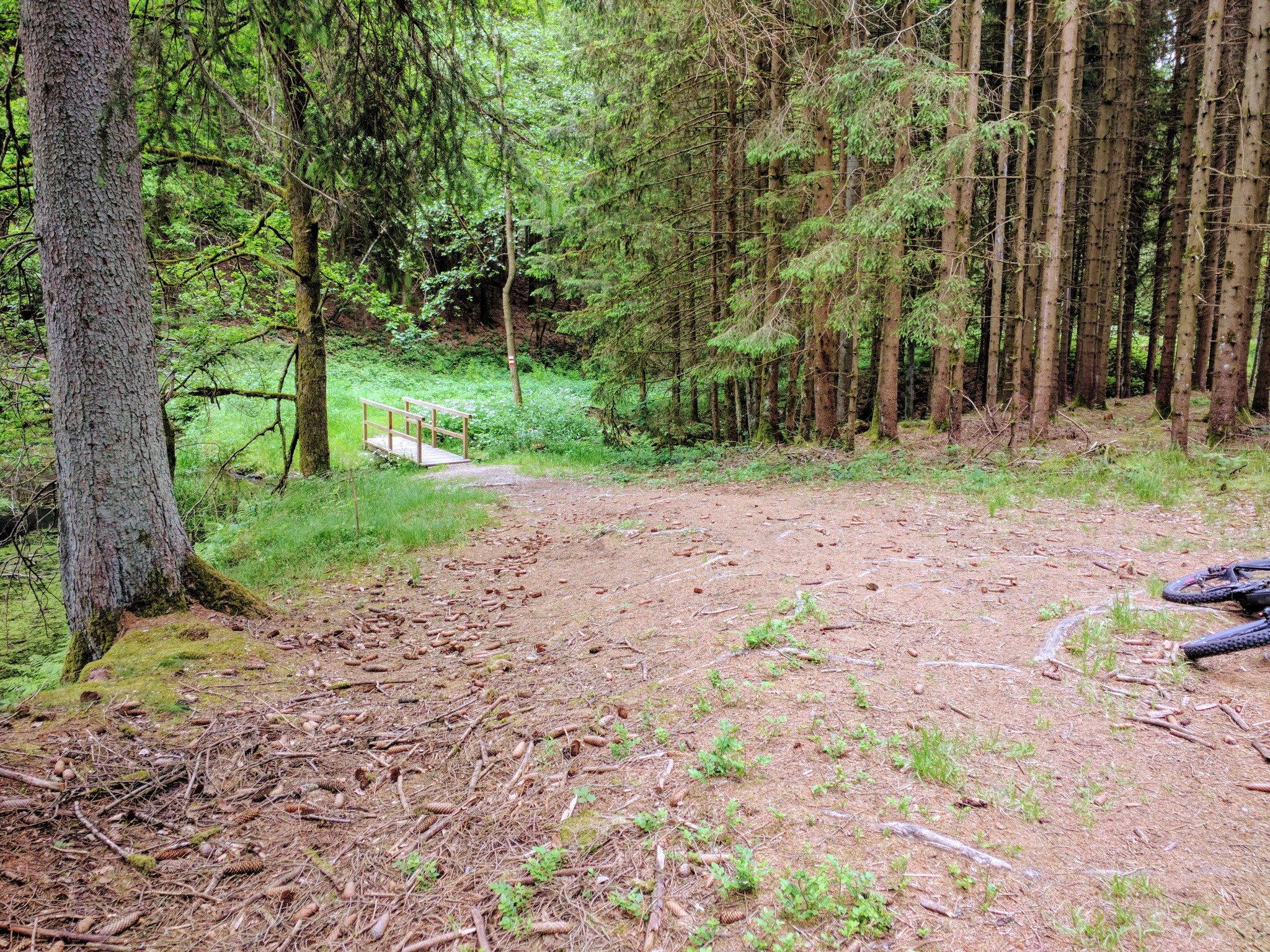 Weg nach Steinbach