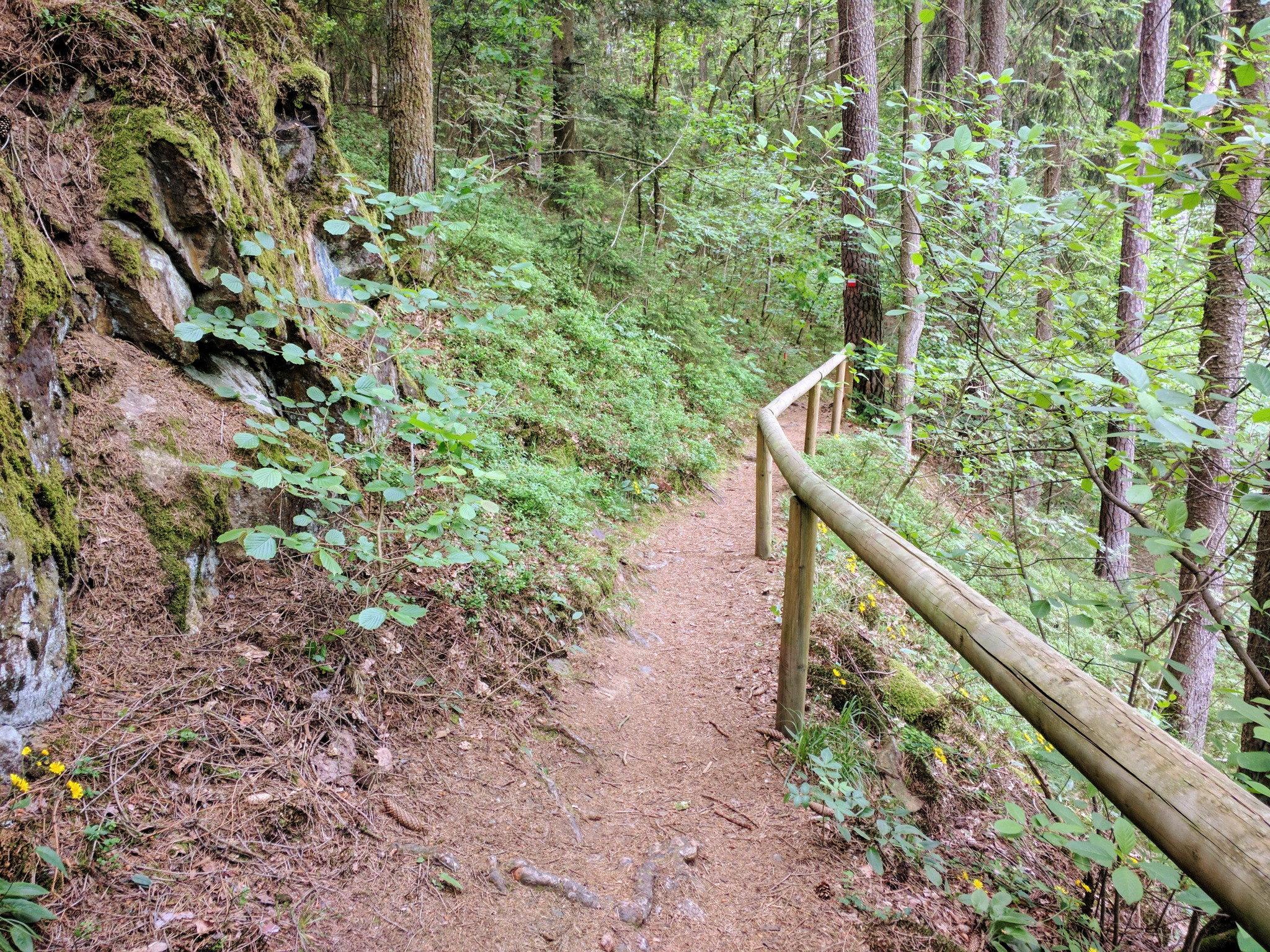 Trail am Weißen Regen